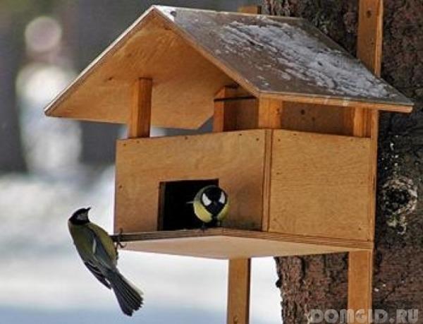 Сделать дом для птиц своими руками